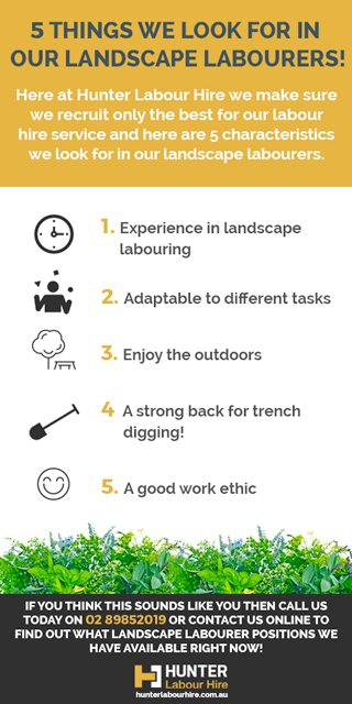 landscaping-and-gardening-labourer-requirements-hunter-labour-hire-sydney