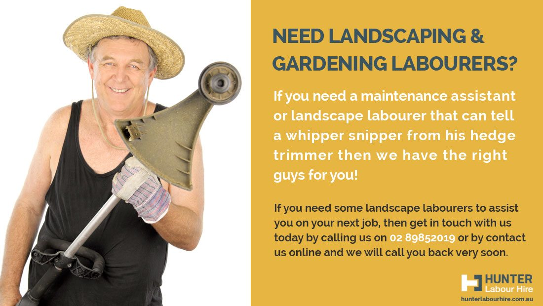 landscaping-and-gardening-labourers-available-sydney-hunter-labour-hire