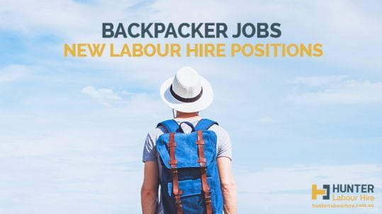 Backpacker Jobs Sydney - New Labour Hire Positions