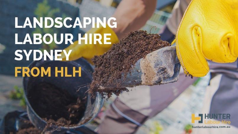 Landscaping Labour Hire Sydney - HLH