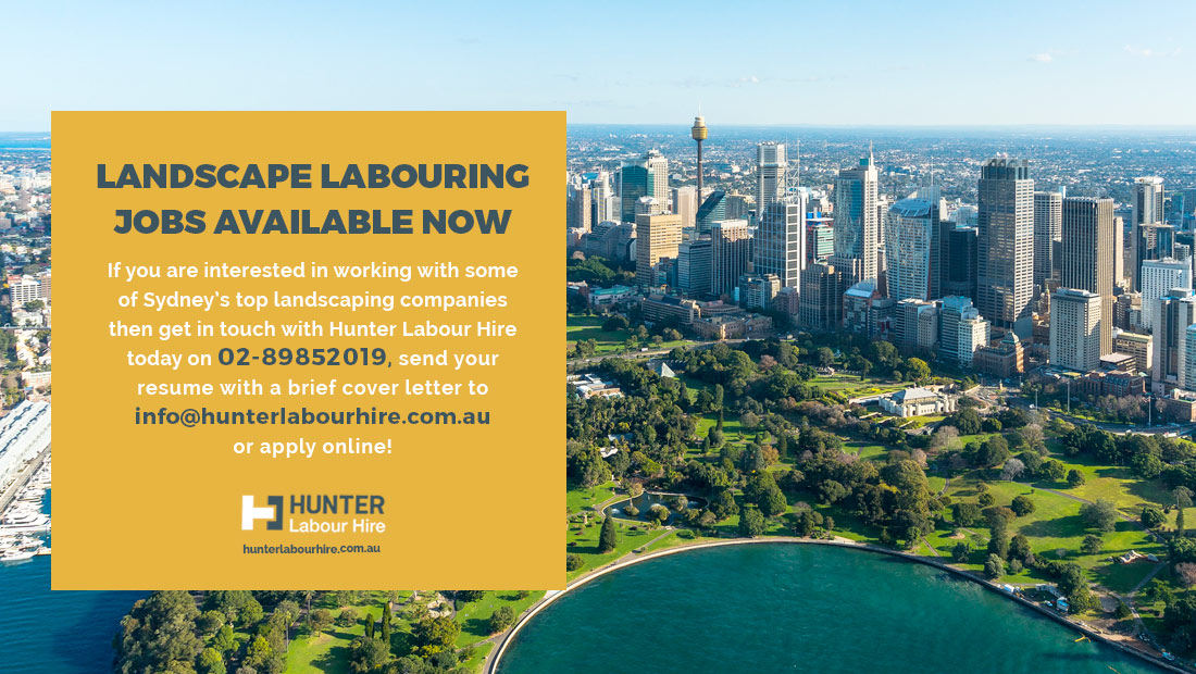 Landscaping Labourer Jobs in Sydney