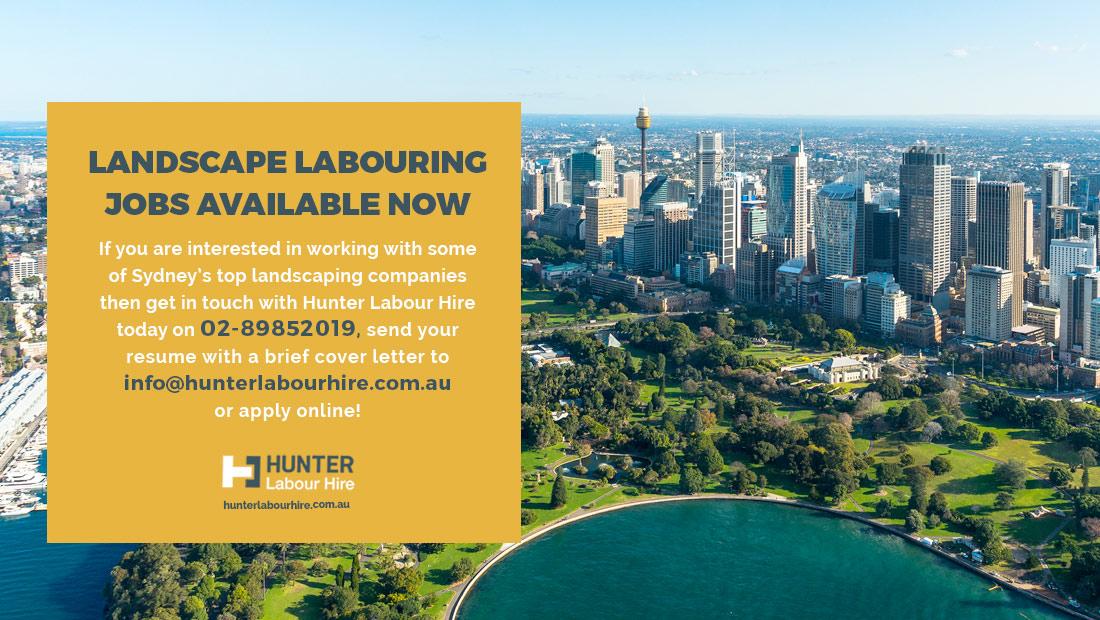 Landscaping Labourer Jobs in Sydney