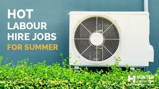 Labour Hire Jobs for Summer Sydney