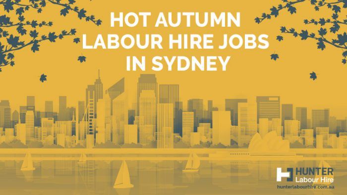 Hot Autumn Labour Hire Jobs in Sydney - Hunter Labour Hire