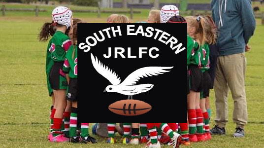 South Eastern Seagulls - Hunter Labour Hire Sponsor