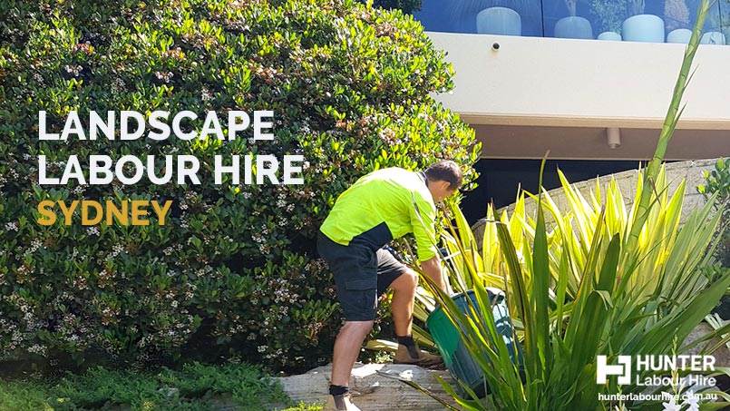 Landscape Labour Hire Sydney - HLH Group