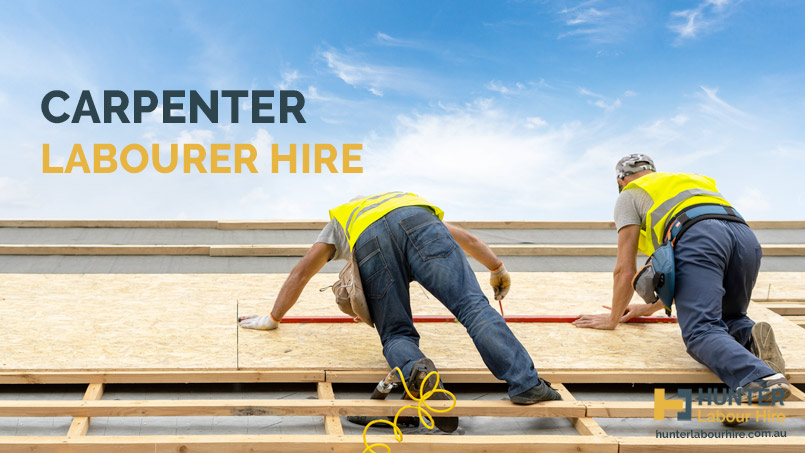 Carpenter Labourer Hire - Hunter Labour Hire Sydney