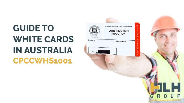 Guide to White Cards Australia - Construction Labour Hire - HLH Group