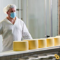Food Production - Manufacturing Labour Hire Sydney - HLH Group