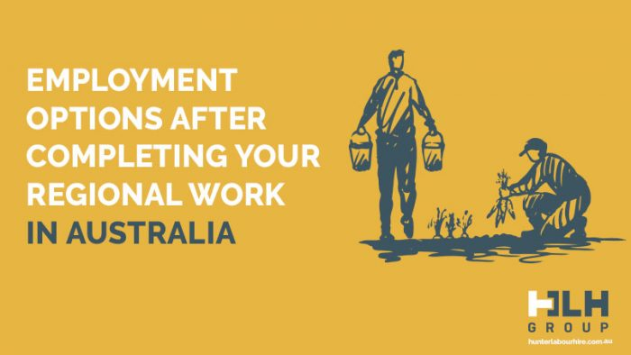Regional Work Australia Labour Options for Fruit Pickers - HLH Group