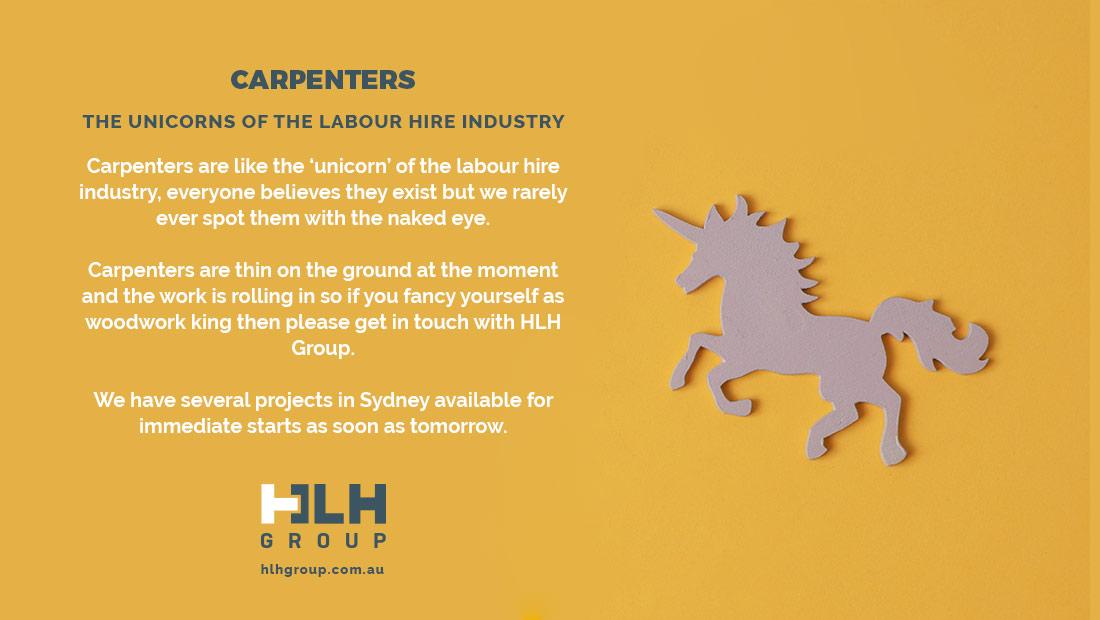 Carpenters - Unicorns Labour Hire Industry - HLH Group